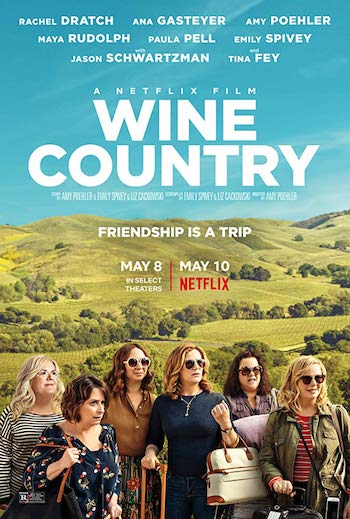Wine Country 2019 Dual Audio Hindi 720p WEB-DL 800mb