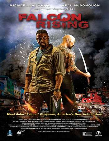Falcon Rising 2014 Hindi Dual Audio BRRip Full Movie 720p Download