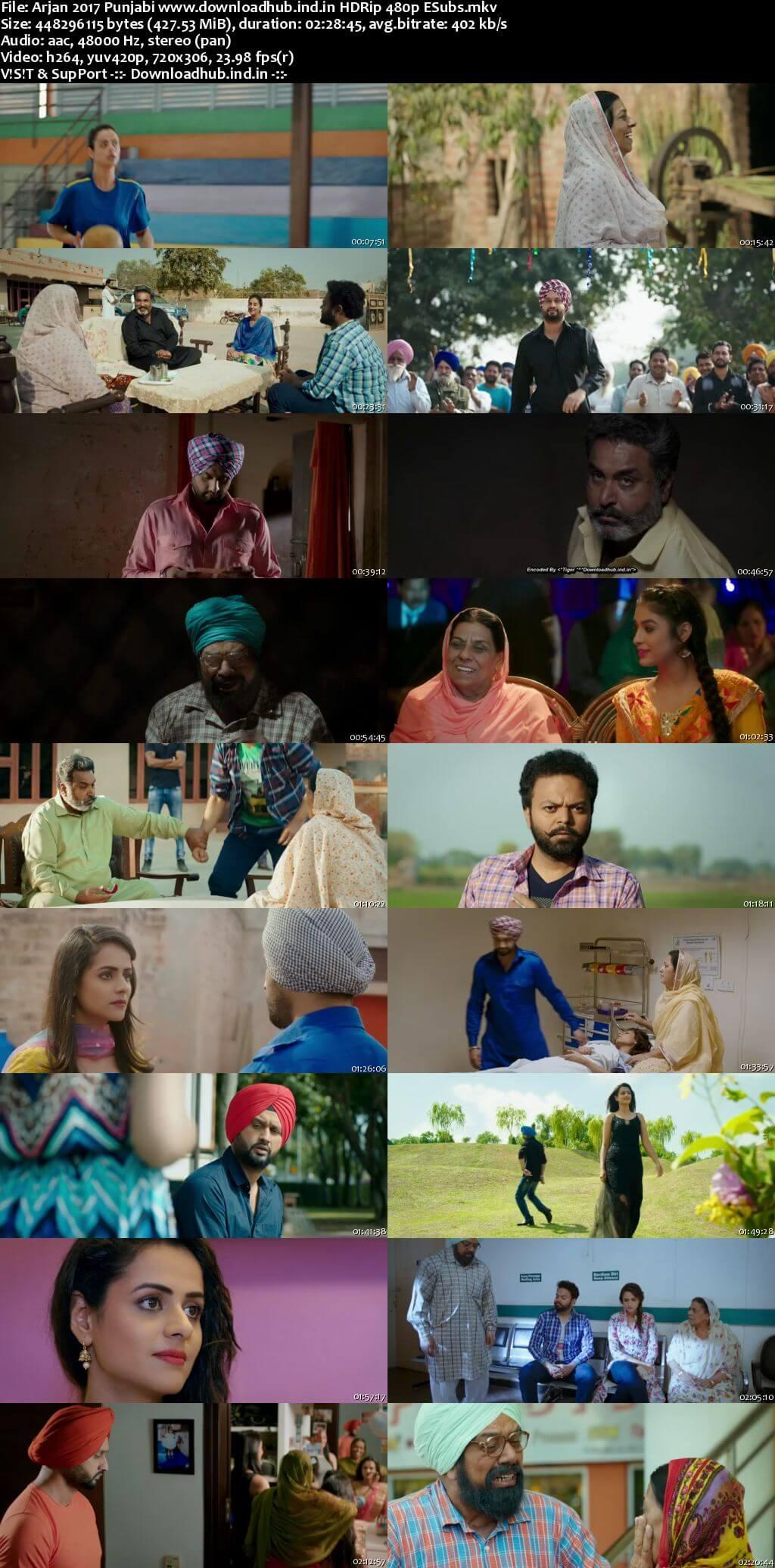 Arjan 2017 Punjabi 400MB HDRip 480p ESubs