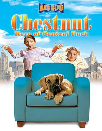 Chestnut Hero of Central Park 2004 UNCUT Hindi Dual Audio HDTVRip Full Movie 720p Download