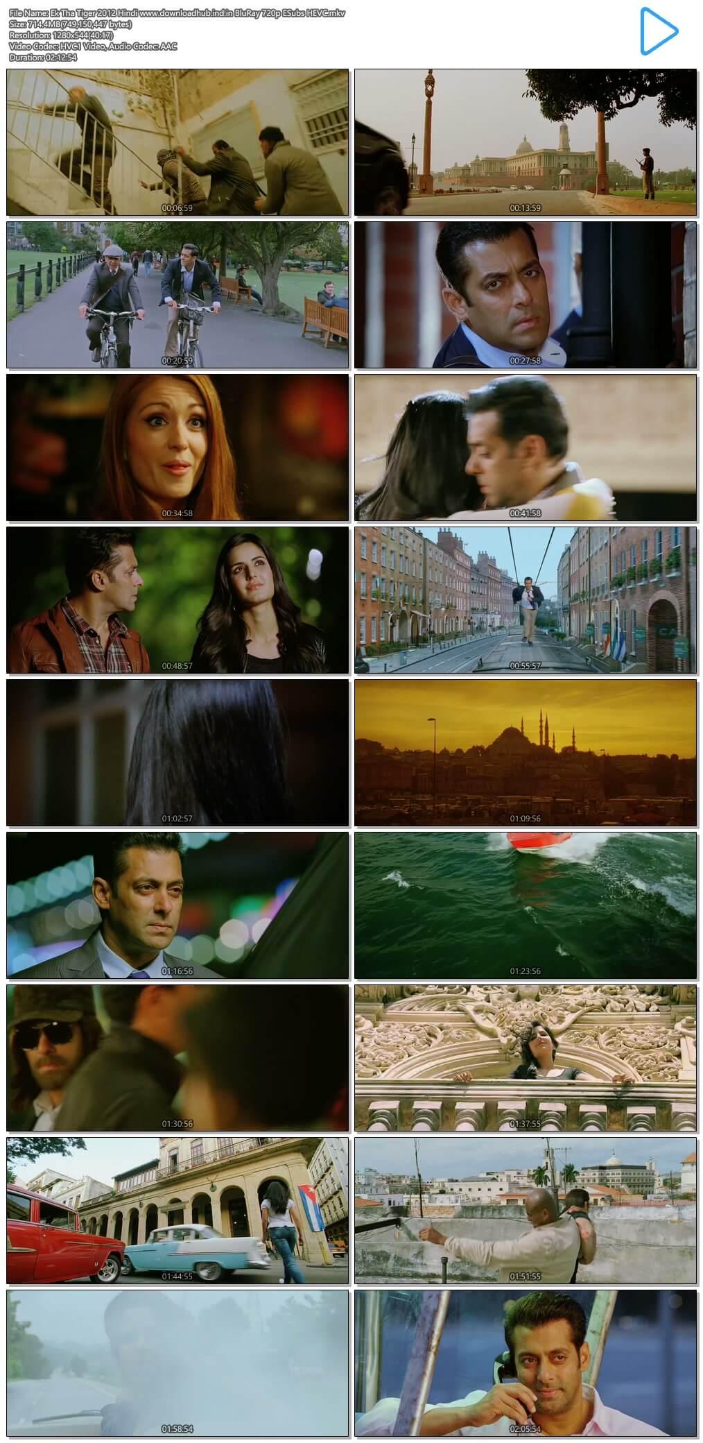 Ek Tha Tiger 2012 Hindi 700MB BluRay 720p ESubs HEVC