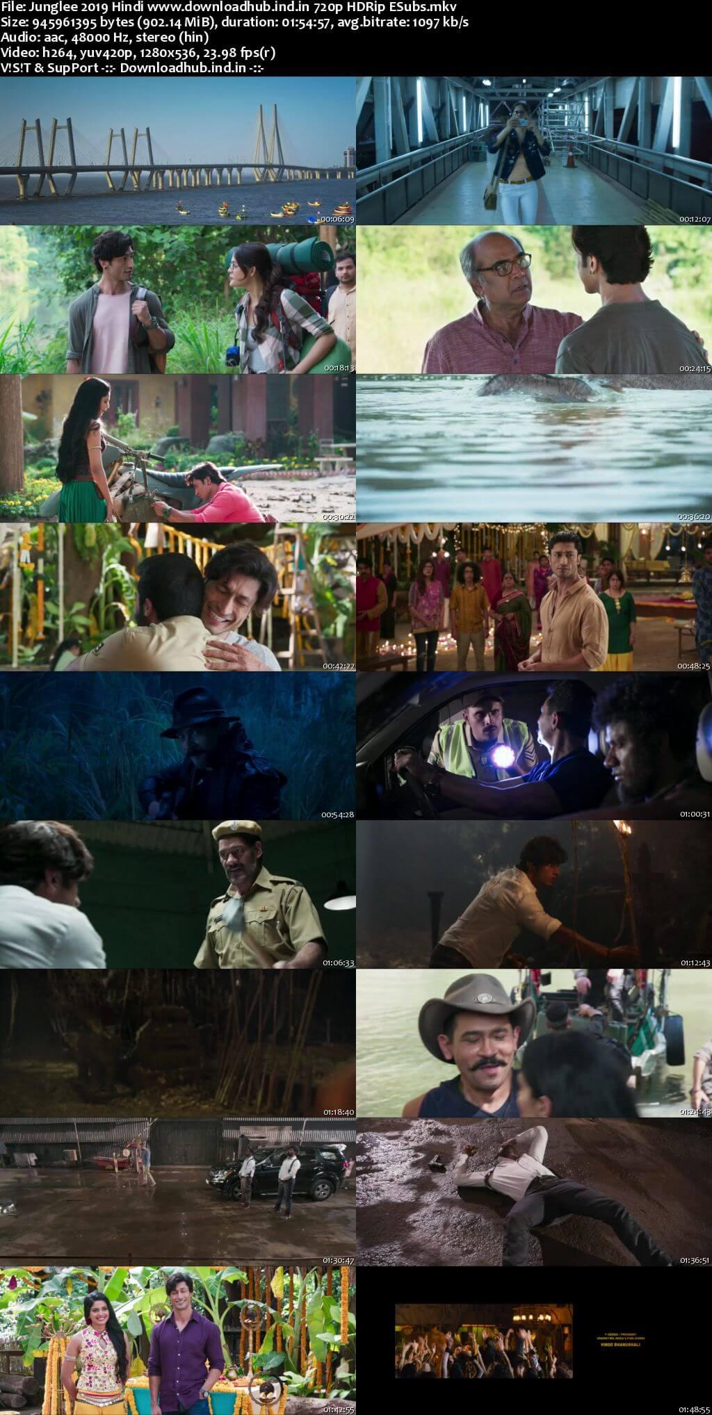 Junglee 2019 Hindi 720p HDRip ESubs