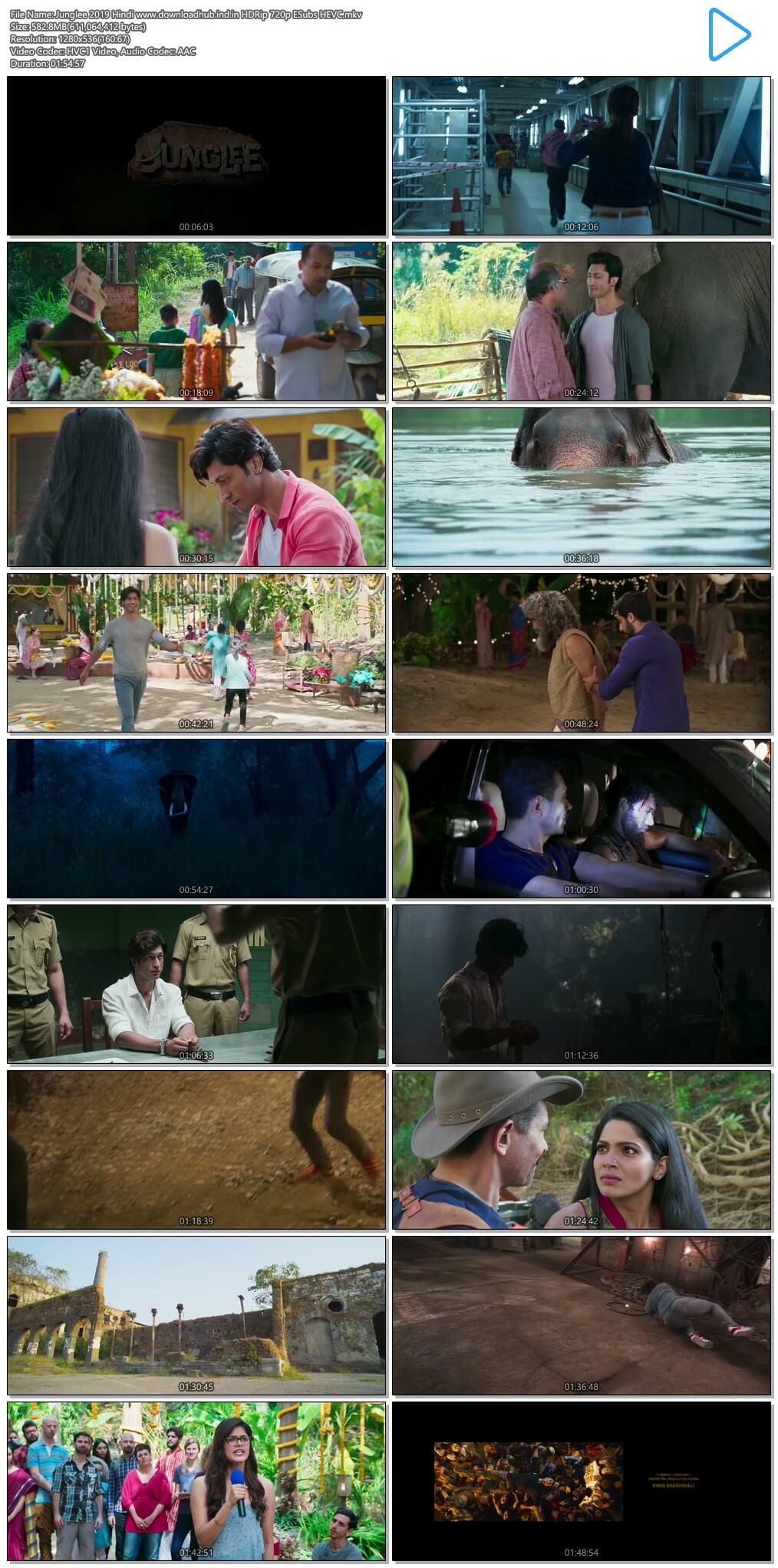 Junglee 2019 Hindi 550MB HDRip 720p ESubs HEVC