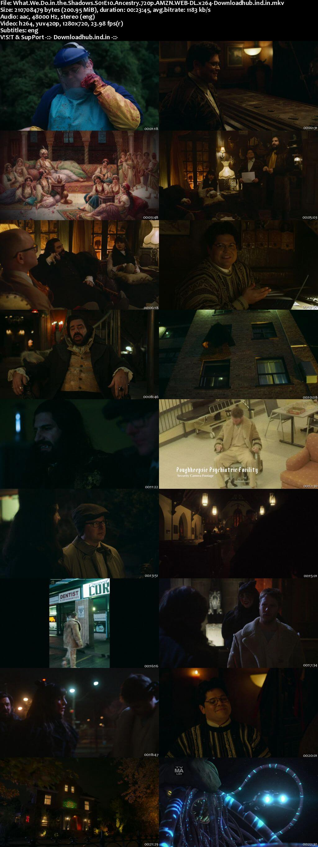 What We Do in the Shadows S01E10 200MB AMZN WEB-DL 720p ESubs
