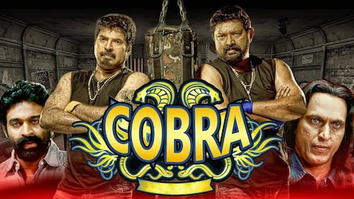 Cobra 2019 Hindi Dubbed 480p HDRip 350MB