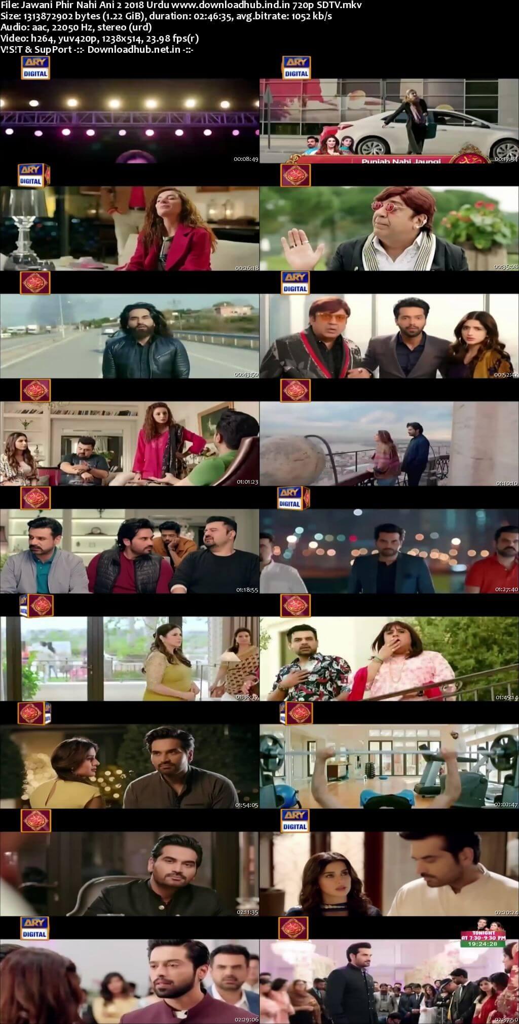 Jawani Phir Nahi Ani 2 2018 Urdu 720p HDTV x264