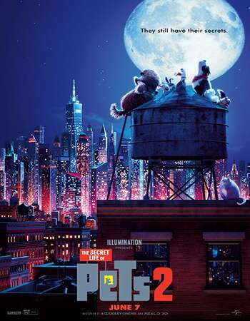 The Secret Life of Pets 2 2019 Hindi Dual Audio 400MB Web-DL 720p ESubs HEVC