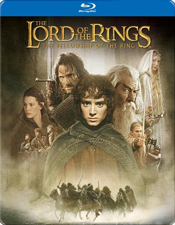Lord of the Rings The Fellowship of the Ring 2001 Dual Audio Hindi 480p BluRay 600mb