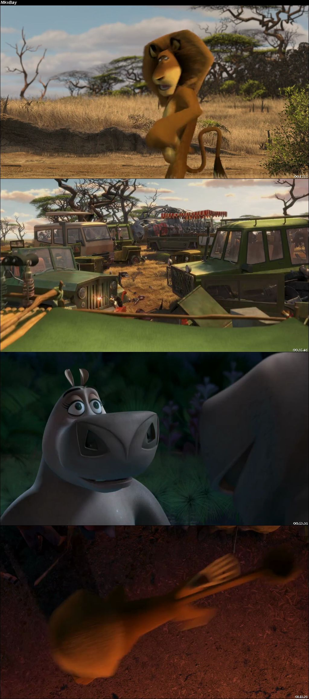 Screen Shoot of Madagascar: Escape 2 Africa 2008 Full Hindi Dual Audio Movie Download BluRay 720p