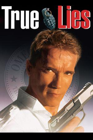 Poster of True Lies 1994 Full Hindi Dual Audio Movie Download BluRay 720p