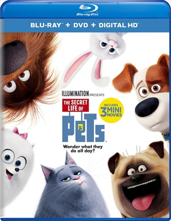 The Secret Life Of Pets 2016 Dual Audio ORG Hindi 480p BluRay 280mb