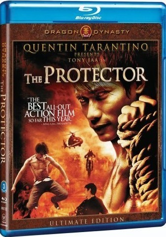 The Protector 2005 Dual Audio Hindi 480p BluRay 300mb