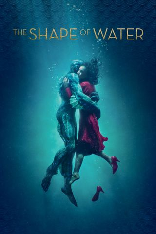 Poster of The Shape of Water 2017 Full Hindi Dual Audio Movie Download BluRay Hd 480p