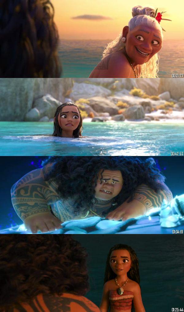 Moana 2016 BluRay 720p 480p Dual Audio Hindi English Full Movie Download