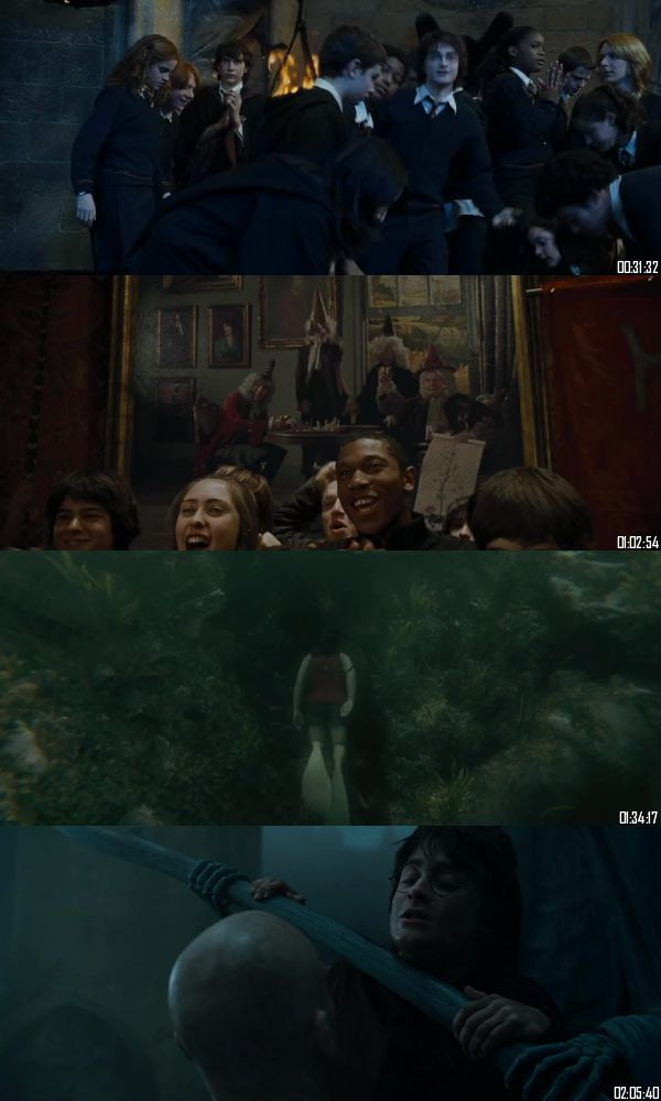 Harry Potter And The Goblet Of Fire 2005 BRRip 720p 480p Dual Audio Hindi English Full Movie Download