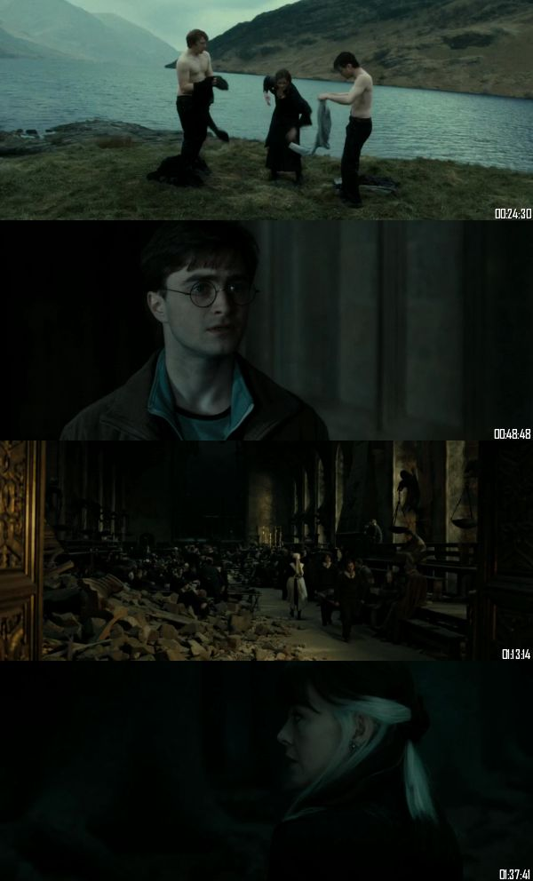 Harry Potter and the Deathly Hallows Part 2 (2011) BRRip 720p 480p Dual Audio Hindi English Full Movie Download