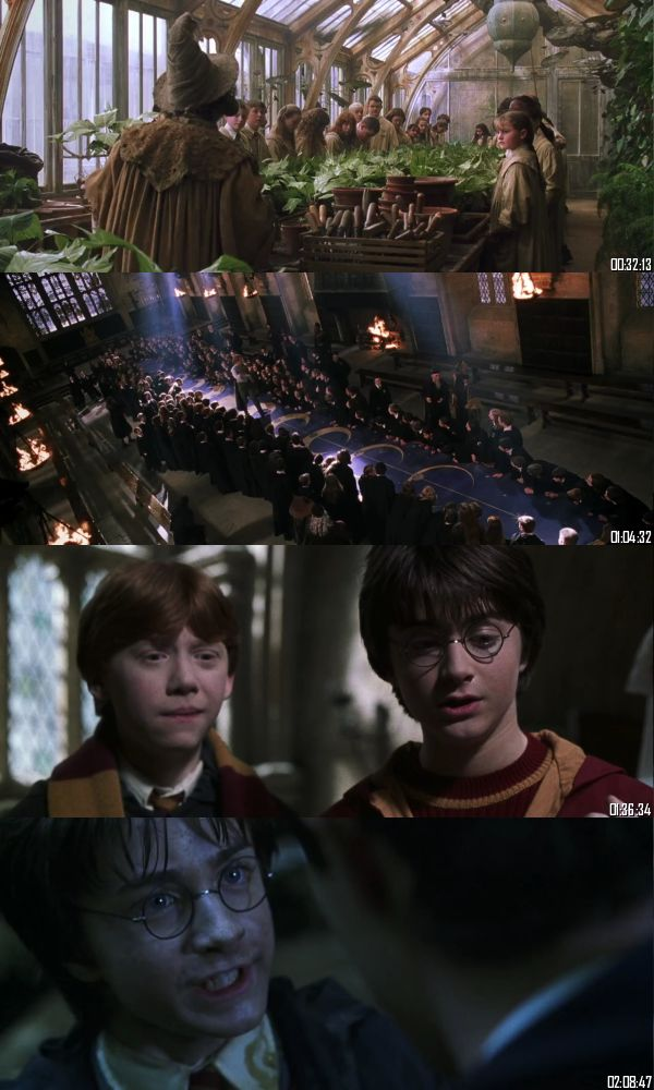 Harry Potter And The Chamber Of Secrets 2002 BRRip 720p 480p Dual Audio Hindi English Full Movie Download