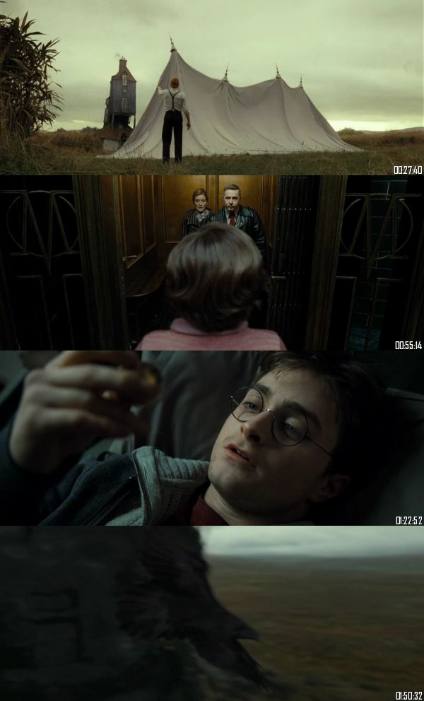 Harry Potter and the Deathly Hallows Part 1 (2010) BRRip 720p 480p Dual Audio Hindi English Full Movie Download