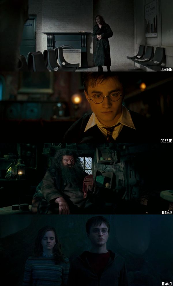 Harry Potter And The Order Of The Phoenix 2007 BRRip 720p 480p Dual Audio Hindi English Full Movie Download