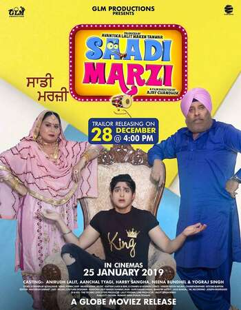 Saadi Marzi 2019 Full Punjabi Movie 720p HEVC Download