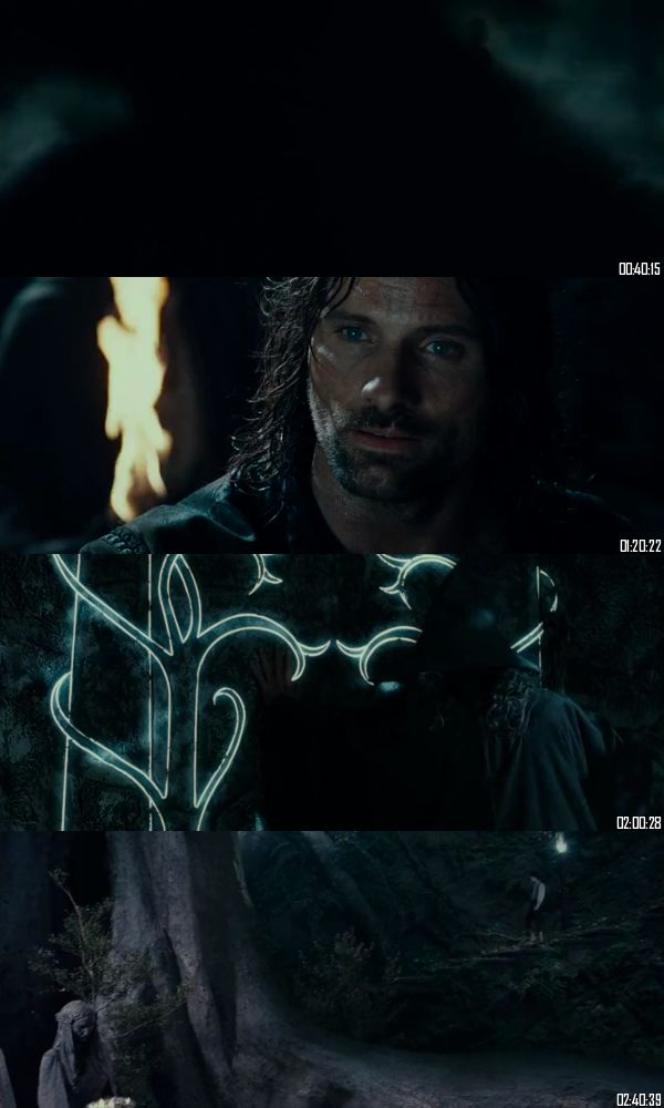Lord of the Rings The Fellowship of the Ring 2001 BRRip 720p 480p Dual Audio Hindi English Full Movie Download