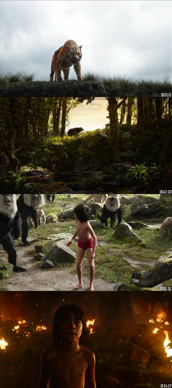 The Jungle Book 2016 BRRip 720p 480p Dual Audio Hindi English Full Movie Download