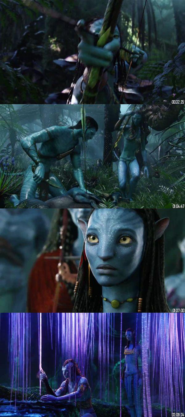 Avatar 2009 BRRip 720p 480p Dual Audio Hindi English Full Movie Download