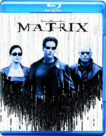 The Matrix 1999 Dual Audio Hindi 720p BluRay 900mb