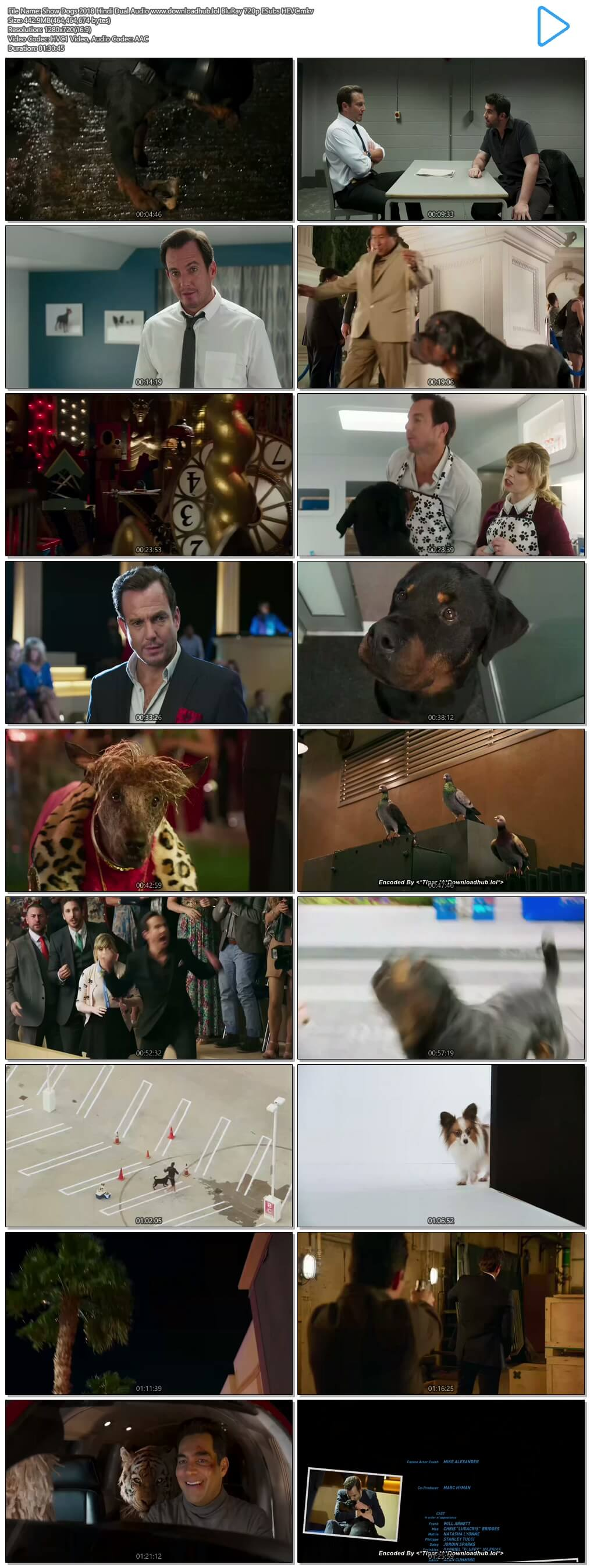 Show Dogs 2018 Hindi Dual Audio 450MB BluRay 720p ESubs HEVC