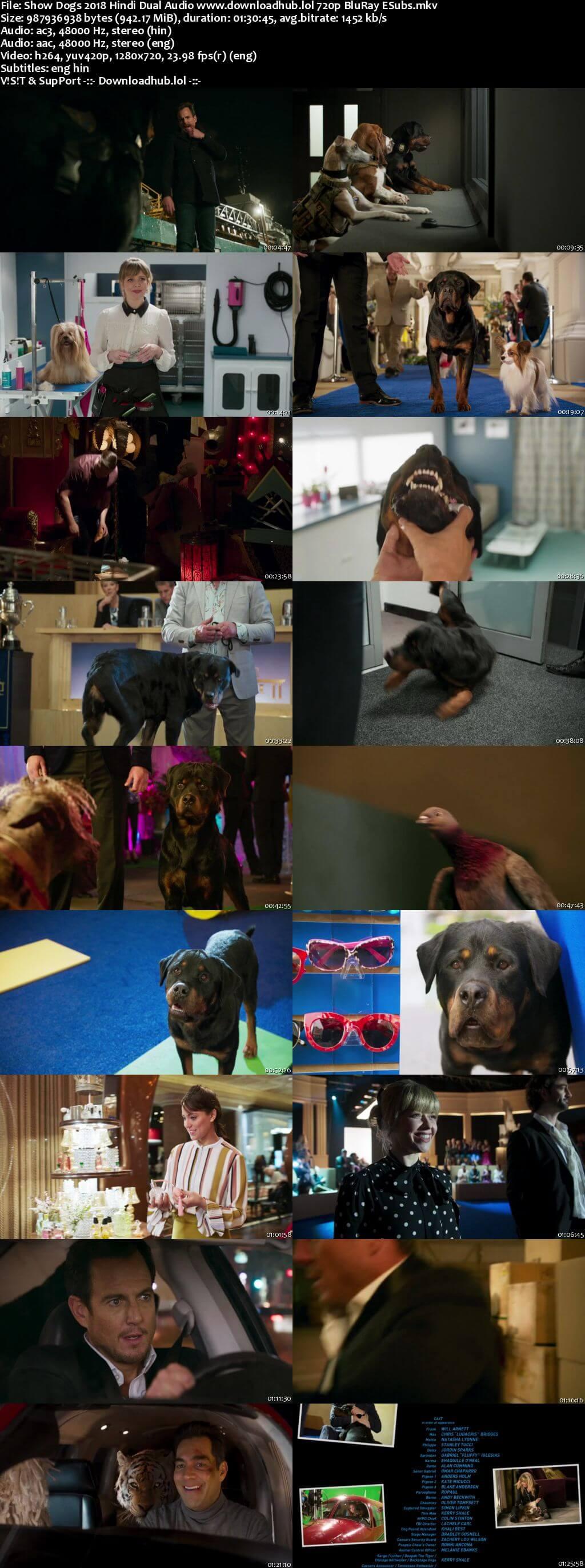 Show Dogs 2018 Hindi Dual Audio 720p BluRay ESubs