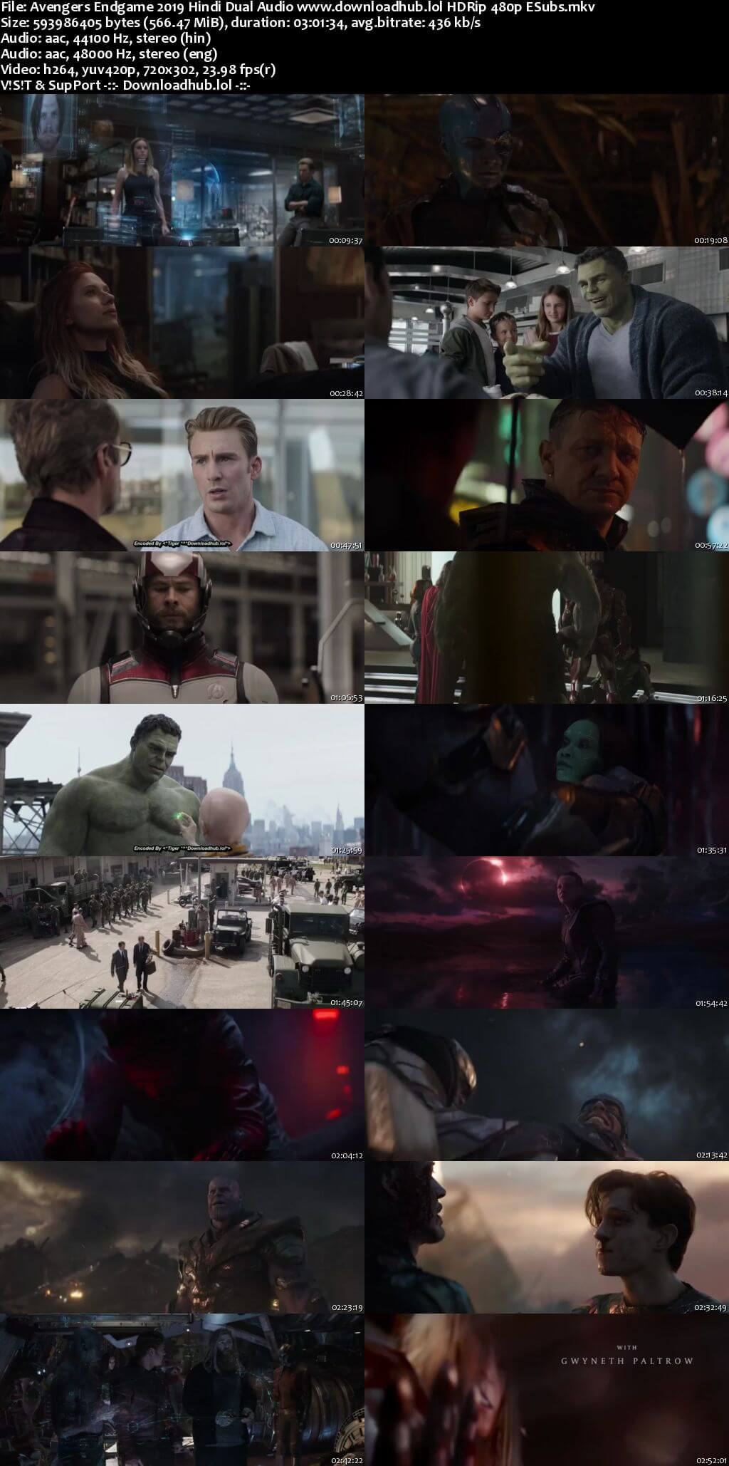 Avengers Endgame 2019 Hindi Dual Audio 550MB HDRip 480p ESubs