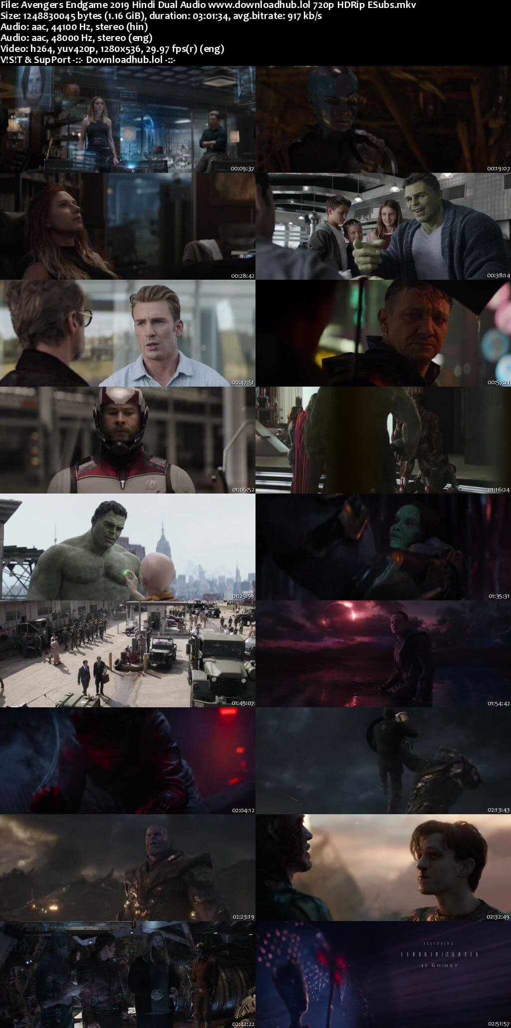 Avengers Endgame 2019 Hindi Dual Audio 720p HDRip ESubs