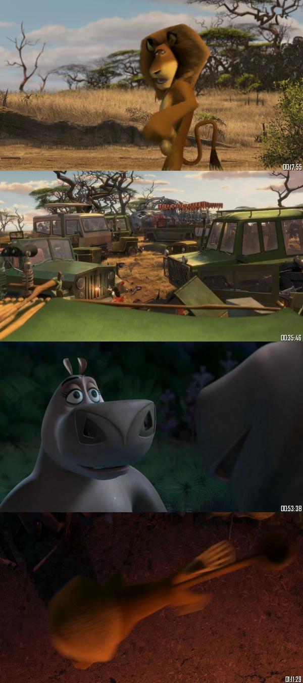 Madagascar - Escape 2 Africa 2008 BRRip 720p 480p Dual Audio Hindi English Full Movie Download