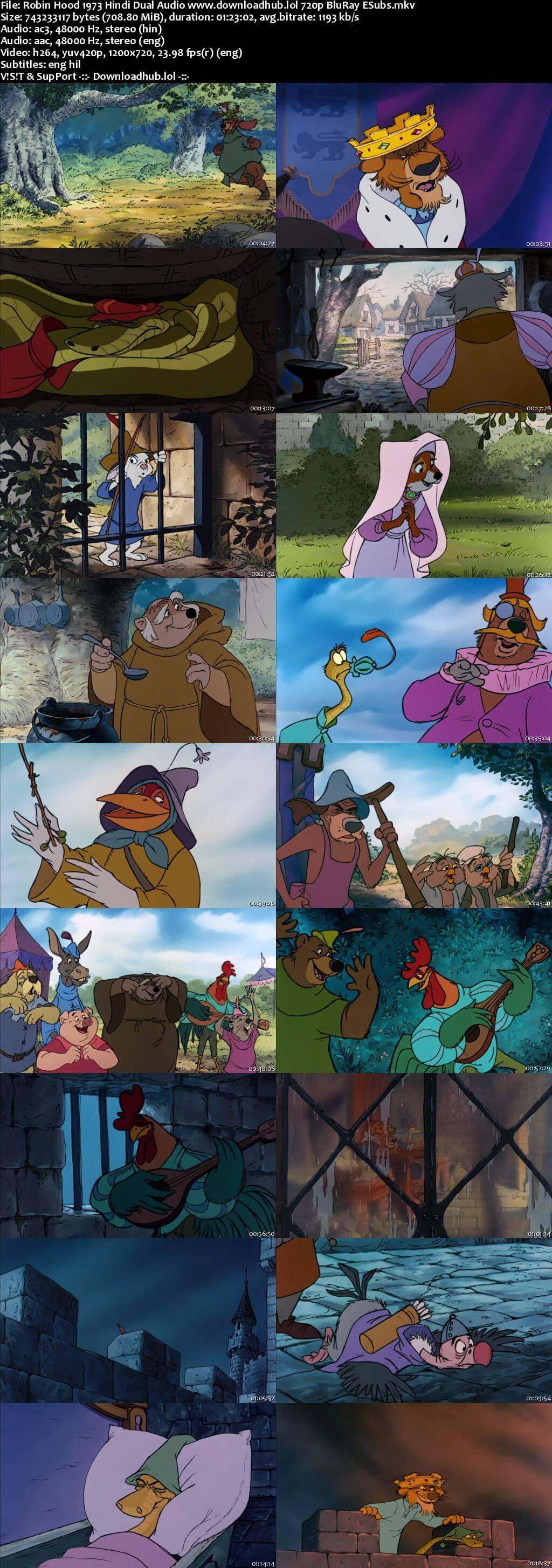 Robin Hood 1973 Hindi Dual Audio 720p BluRay ESubs