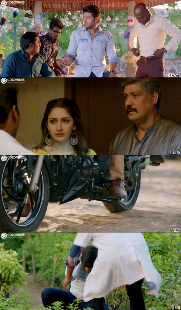 Ghajinikanth 2019 Hindi Dubbed 720p 480p Full Movie Download