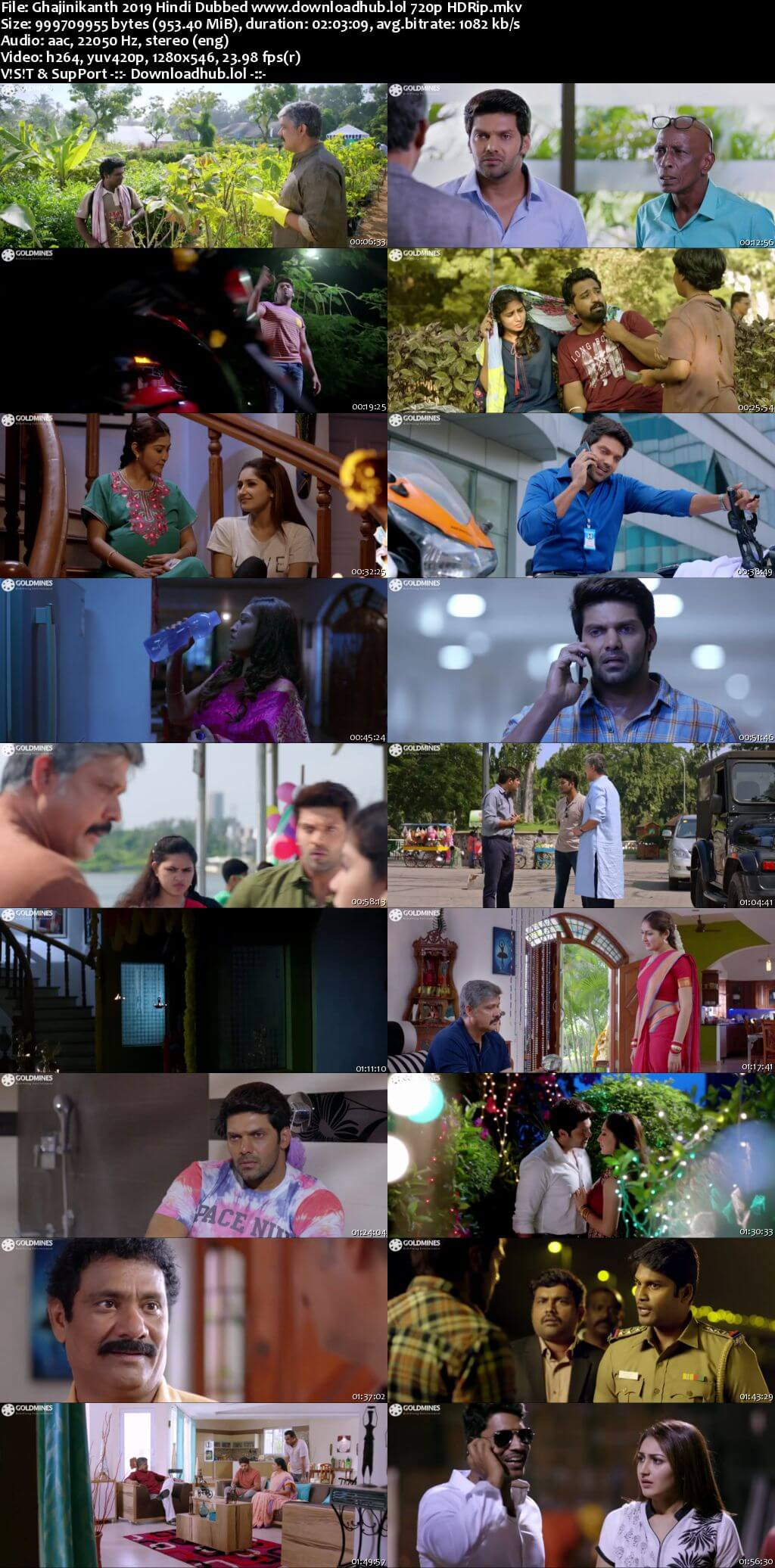 Ghajinikanth 2019 Hindi Dubbed 720p HDRip x264
