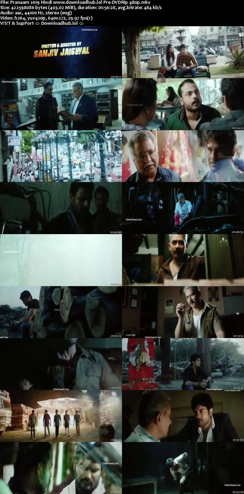 Pranaam 2019 Hindi 400MB Pre-DVDRip 480p