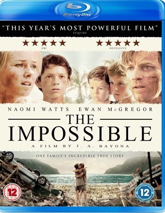 The Impossible 2012 Dual Audio Hindi 720p BluRay 850mb