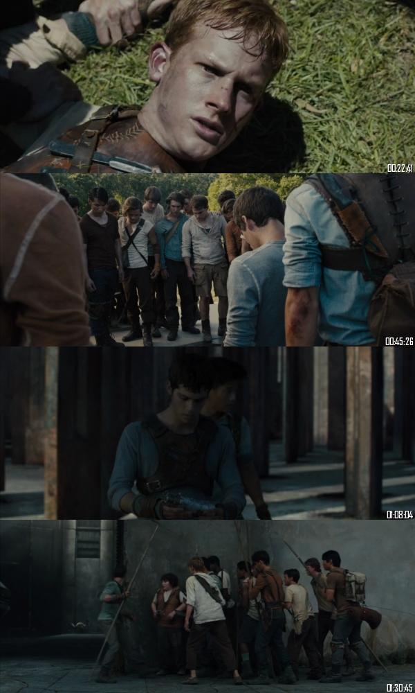 The Maze Runner 2014 BRRip 720p 480p Dual Audio Hindi English Full Movie Download