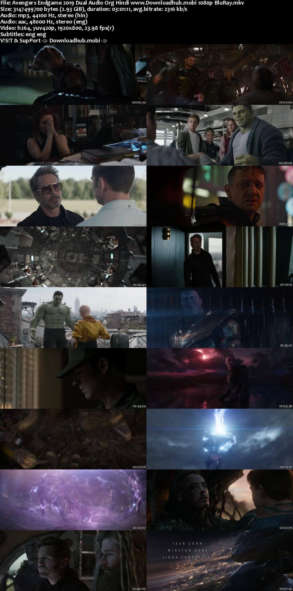 Avengers Endgame 2019 Hindi ORG Dual Audio 1080p BluRay ESubs