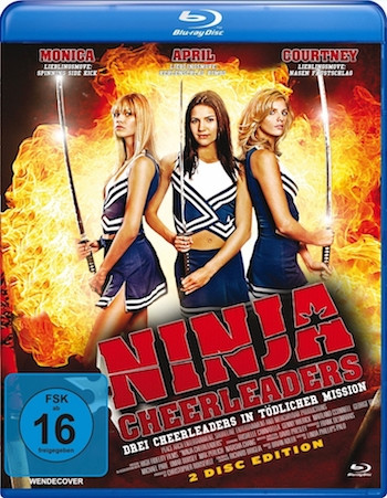 Ninja Cheerleaders 2008 Dual Audio Hindi Bluray Movie Download