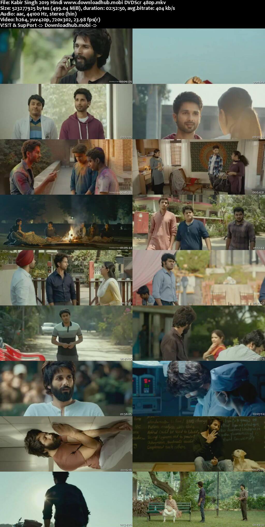 Kabir Singh 2019 Hindi 500MB DVDScr 480p