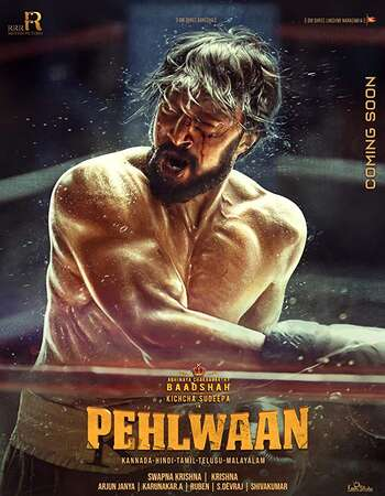 Pailwaan 2019 Hindi Dual Audio 850MB UNCUT HDRip 720p ESubs HEVC