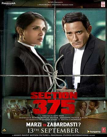 Section 375 2019 Hindi 600MB HDRip 720p ESubs HEVC
