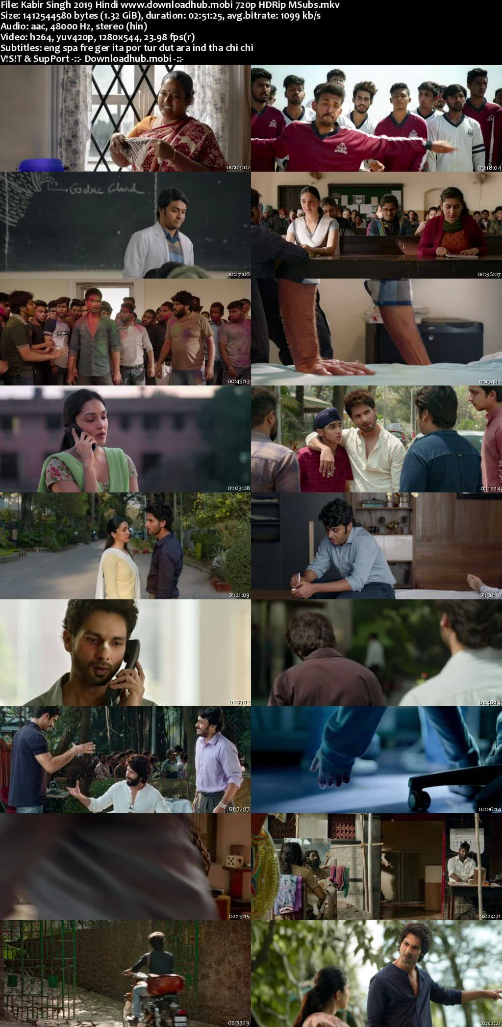 Kabir Singh 2019 Hindi 720p HDRip MSubs