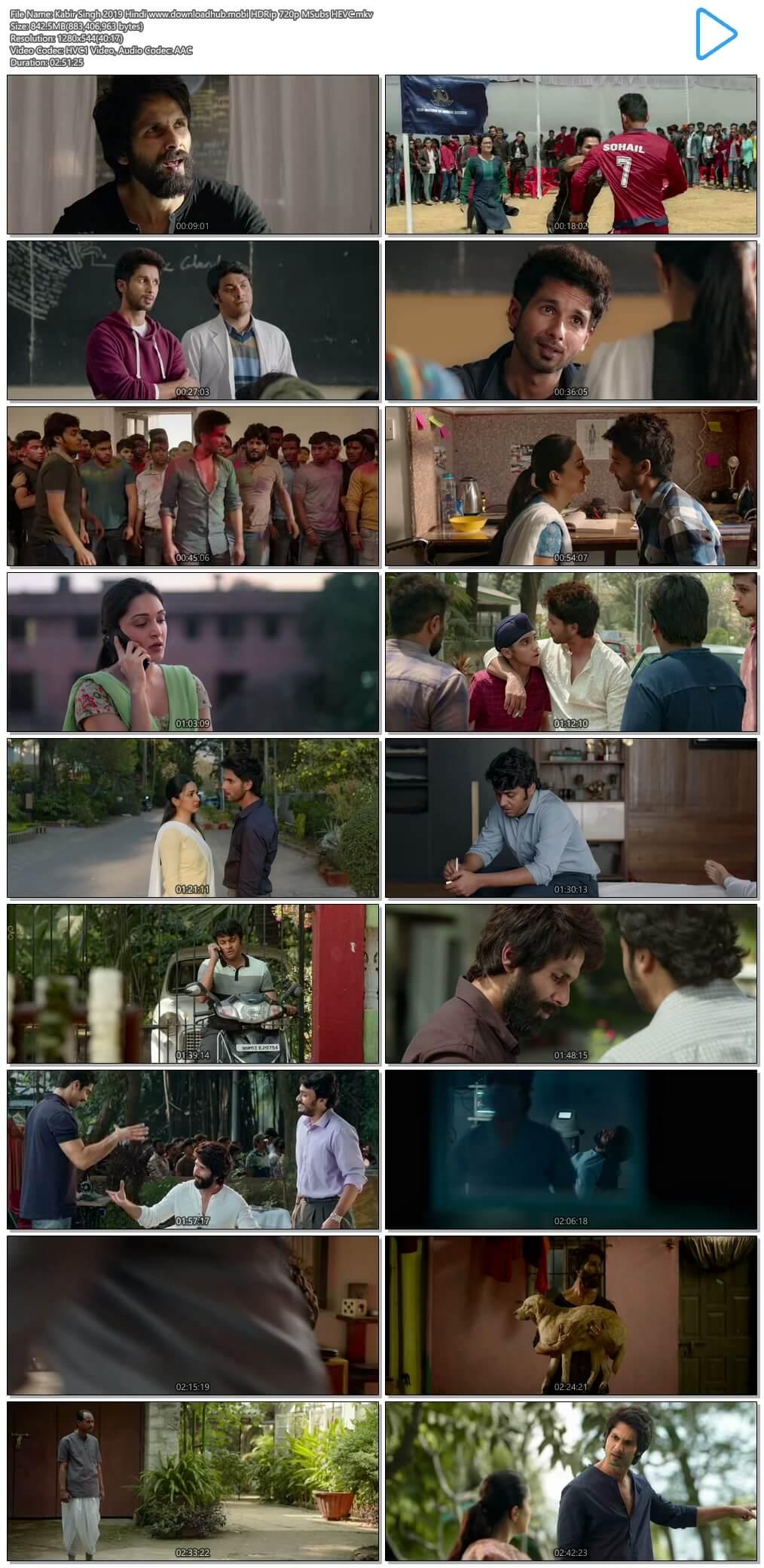 Kabir Singh 2019 Hindi 800MB HDRip 720p MSubs HEVC