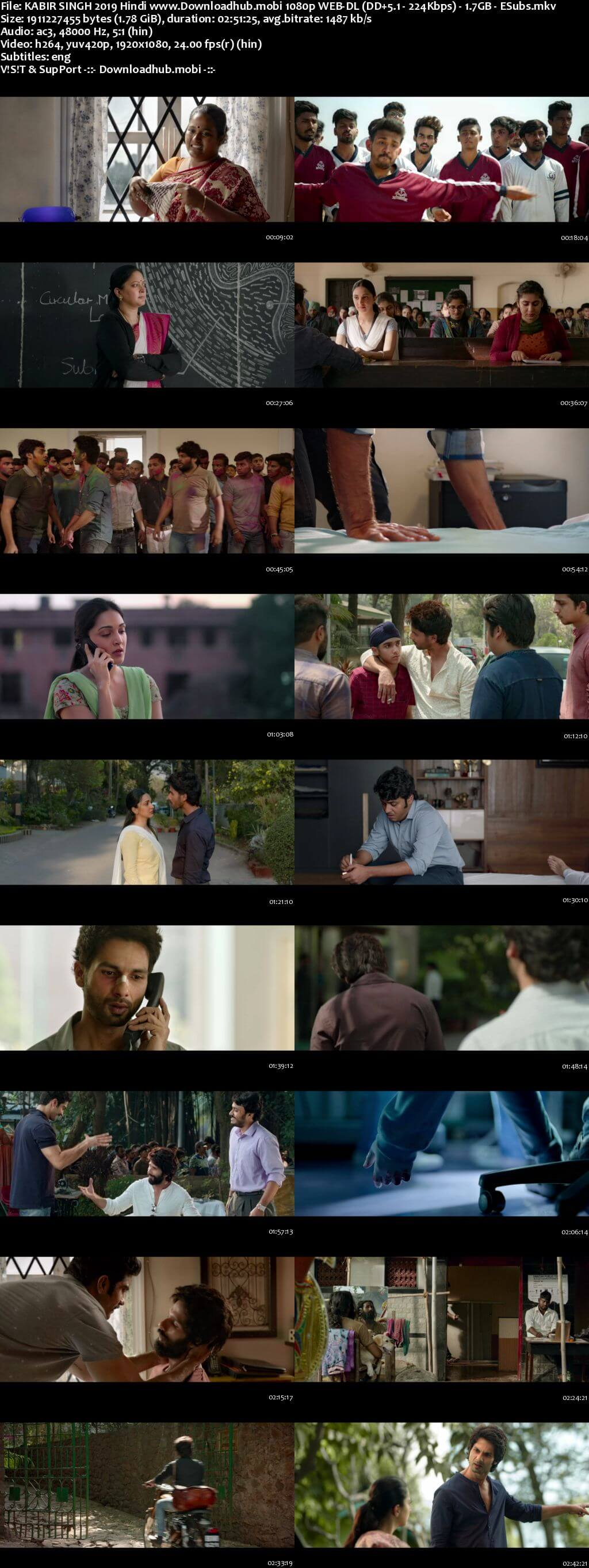 Kabir Singh 2019 Hindi 1080p HDRip ESubs