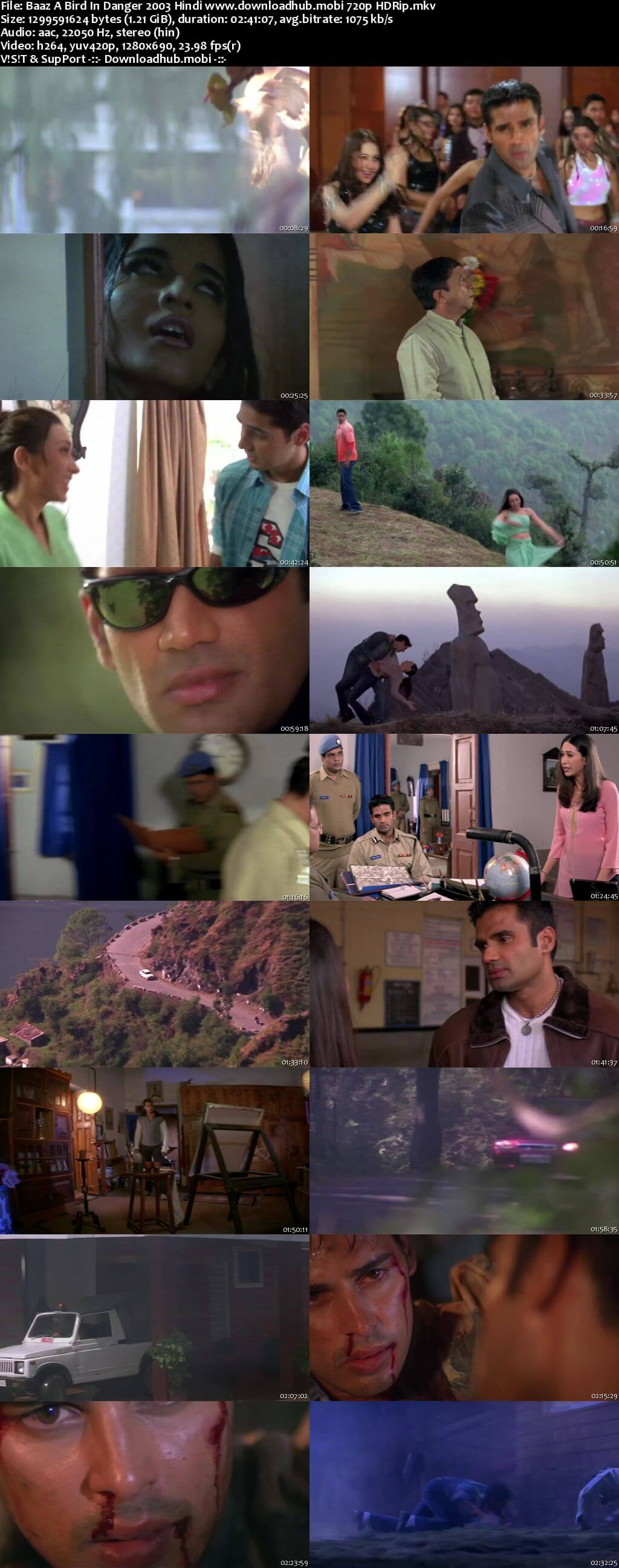 Baaz A Bird in Danger 2003 Hindi 720p HDRip x264