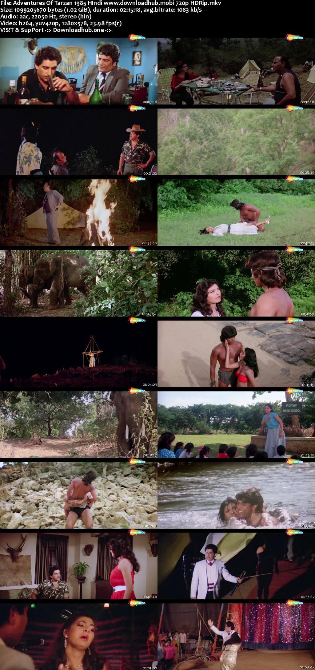 Adventures of Tarzan 1985 Hindi 720p HDRip x264