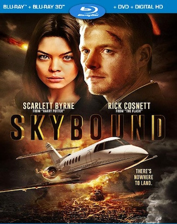 Skybound 2018 Dual Audio Hindi Bluray Movie Download